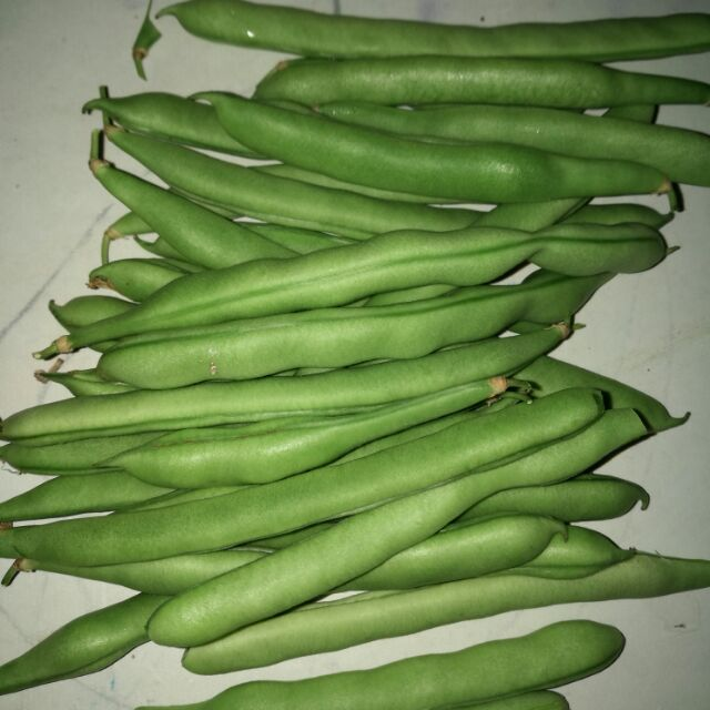 Image of Baguio beans